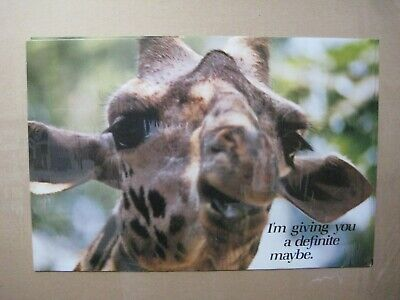 £28.74 • Buy I'm Giving You A Definite Maybe Vintage Mini Poster Cng2462