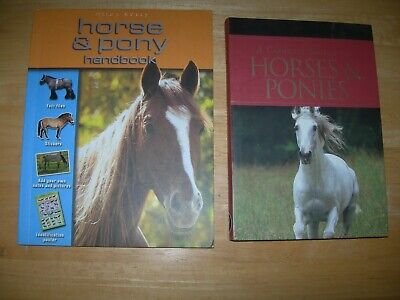 £5 • Buy 2 Books A Concise Guide To Horses & Ponies + Horse & Pony Handbook, VGC FREE P&P