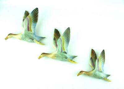 £65 • Buy Set Of 3 Flying Wall Ducks   Multi Coloured Blue / Green / Red / Yellow