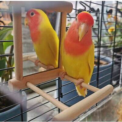 £3.99 • Buy Mirror Pet Bird Wooden Play Toy With Perch Mirror Toy Stand Bird Toy Parrot Cage
