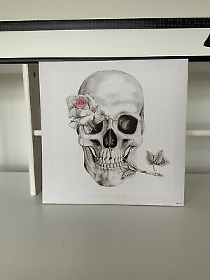 £5 • Buy Skull And Rose CANVAS PRINT Square Wall Art