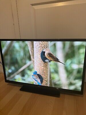 £29.99 • Buy Bush 32 Inch Tv Dvd Combo Great Condition Tv With Built In Dvd  And Free View