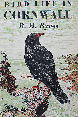 Hardback Book: Bird Life In Cornwall. B.H. Ryves. Collins. 1948. First Edition. • 20£