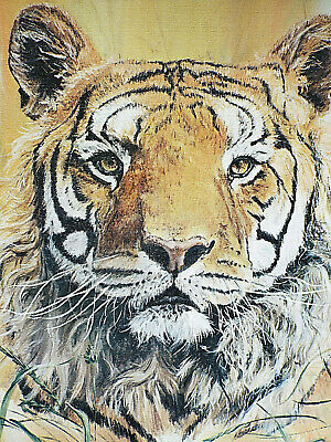$ CDN70.58 • Buy Vintage Print Of Original Canvas Signed Phil Prentice 24  X 18  BENGAL TIGER