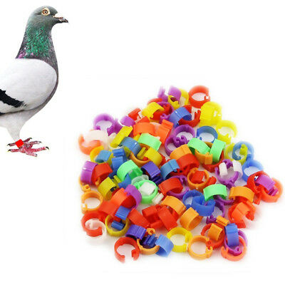 100Pcs Poultry Leg Rings 8mm Plastic Dove Parrot Pigeon Clip Ring Identify Rings • 3.57£
