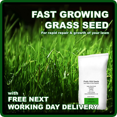 £12.99 • Buy Fast Growing Rapid Lawn Grass Seed  Quick Fix Repair Pets Dogs Kids 1-500kg
