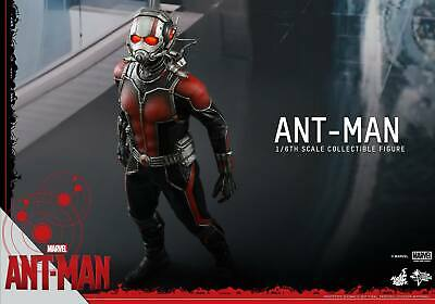 $ CDN34.38 • Buy #a# Hot Toys 1/6 Marvel Ant-man Mms308 Scott Lang Action Figure