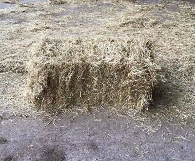 £300 • Buy 120 Small Bales Of Hay For Sale