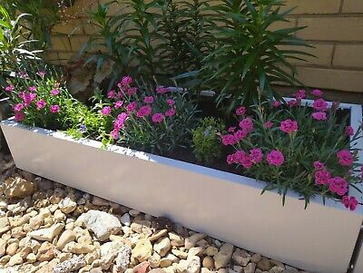 Garden Raised Bed And Planters Metal White 1x0.5m • 40£