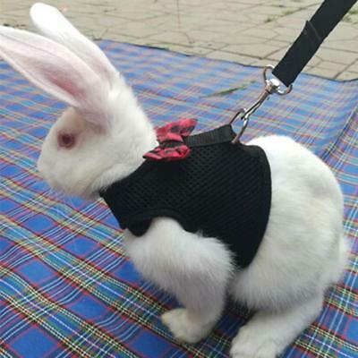 £3.12 • Buy Pet Vest Lead Breathable Hamster Rabbit Harness Leash With Bow Breast Strap YI