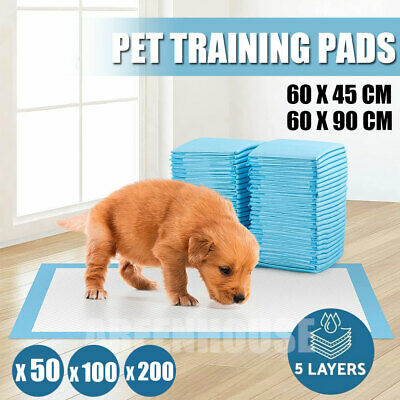 £10.99 • Buy 200 Large Puppy Training Trainer Train Pads Toilet Pee Wee Mats Poo Dog Pet Cat