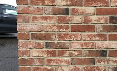 Bayswater Blend Brick Slips, Feature Wall, Brick Tiles SAMPLE • 1£