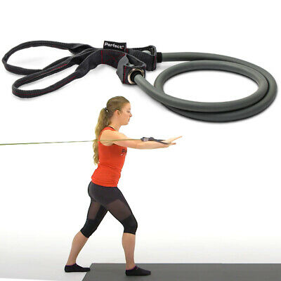 $ CDN12.08 • Buy Perfect Fitness Resistance Band For Exercise, Strength Workout With Loop Handles