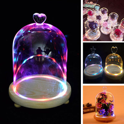 £17.94 • Buy Illuminated Glass Display Dome Bell Jar Cloche Cover Vase With LED Wooden Base