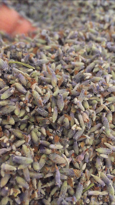 Dried French Lavender Buds Srong Scent Craft Tea Pot Pourri Organically Grown • 3.99£