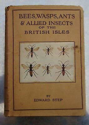 Edward Step BEES, WASPS, ANTS & ALLIED INSECTS OF THE BRITISH ISLES Warne 1932   • 34.99£