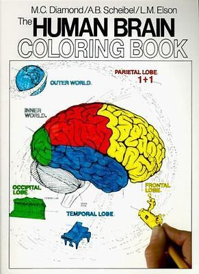 $4.98 • Buy The Human Brain Coloring Book [Coloring Concepts]