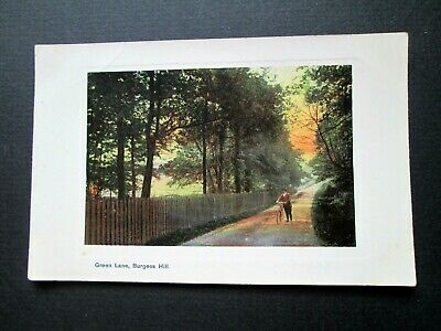 GREEN LANE, BURGESS HILL - ATTRACTIVE POSTCARD BY A. H. HOMEWOOD (1900s) • 4.50£