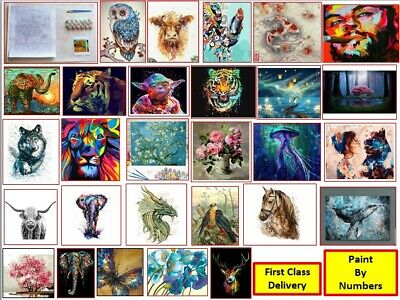 DIY Oil Acrylic Painting Kit Paint By Numbers Adult Children Beginners Frameless • 5.99£