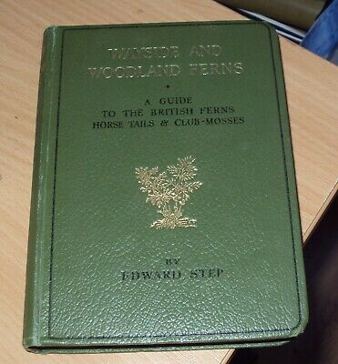 WAYSIDE & WOODLAND FERNS By EDWARD STEP - 1949 - Illustrated • 6.99£
