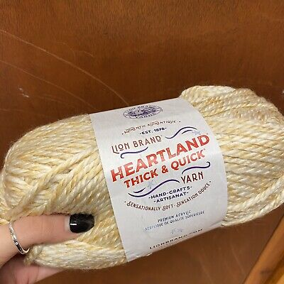 Lion Brand Yarn Thick And Quick Shade Acadia • 8.59£