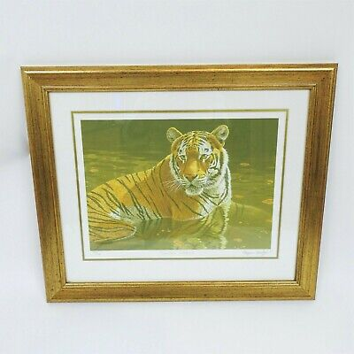 Stephen Gayford Shallow Waters Ltd Edition Tiger Print Framed • 24.99£