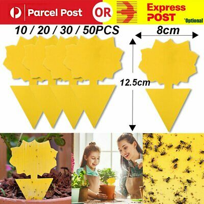 AU8.65 • Buy 10/20/30/50x Dual Sided Sticky Trap Insect Killer Whitefly Thrip Fruit Fly Gnat