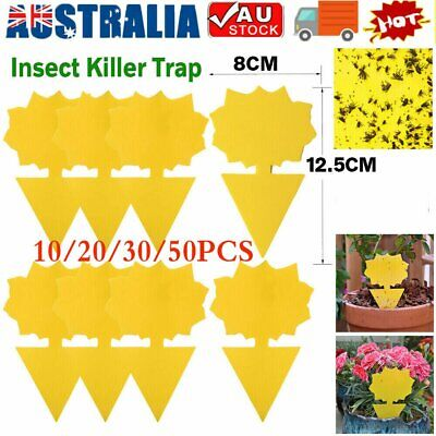 AU15.72 • Buy 10/20/30/50x Dual Sided Sticky Trap Insect Killer Whitefly Thrip Fruit Fly Gnat~