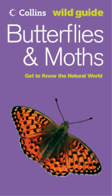 £3.28 • Buy Collins Wild Guide - Butterflies And Moths, John Still, Used; Good Book