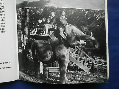 Chester Official Guide & Cathedral - Elephant Rides At Upton-by-chester Zoo 1957 • 7£