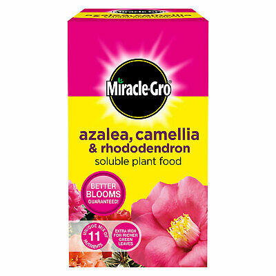 £8.25 • Buy Miracle Gro Azalea, Camellia & Rhododendron Soluble Ericaceous Plant Food 1kg