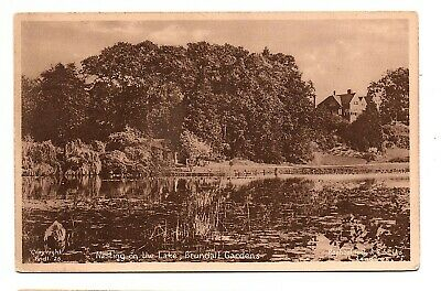 Old Postcard Nesting On The Lake Brundall Gardens Norwich Norfolk • 0.99£