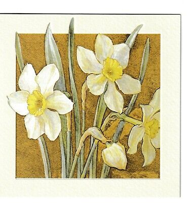 £1.99 • Buy Margaret Tarrant Narcissus Blank Greeting Card Birthday All Occasions