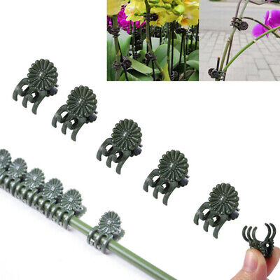 £3.51 • Buy 20/30/40Pcs Plant Support Daisy Garden Orchid Clips Vines Grow Upright Cl`ch