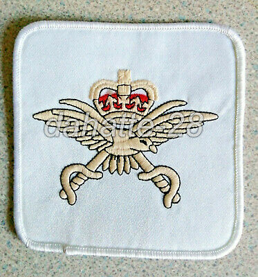 Royal Air Force PHYSICAL TRAINING INSTRUCTOR Cloth Patch • 16£