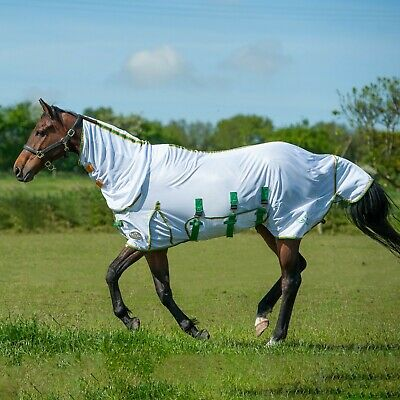 £31.99 • Buy Gallop Combo Full Neck Lightweight Horse Bug Fly Rug UV Protection