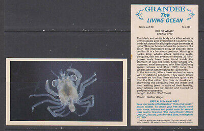 £2.50 • Buy CIGARETTE CARDS Players 1985 The Living Ocean (Grandee) - Complete Set