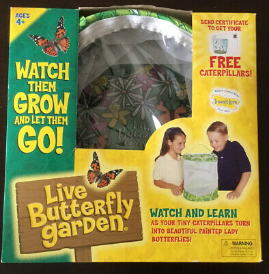 £18.08 • Buy Insect Lore Live Butterfly Garden Educational Science Habitat Toy