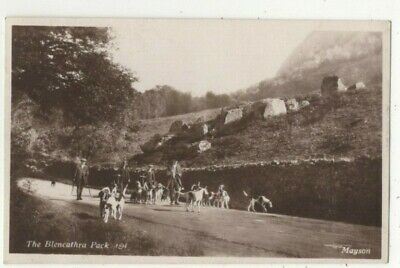 £7.99 • Buy The Blencathra Pack Hunting Cumbria Posted Keswick 1936 RP Postcard Mayson 387c