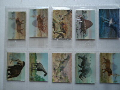 £7.99 • Buy Group Of 10 Vintage Kellogg`s 3D Picture Cards Prehistoric Present Animals 1985