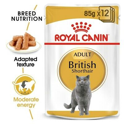 £18.77 • Buy Royal Canin British Shorthair Pouches In Gravy Adult Cat Food 12x85G