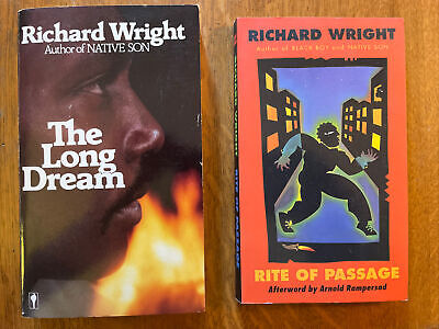 £10.78 • Buy Richard Wright Lot: The Long Dream (87) & Rite Of Passage (96). Nice Copies!