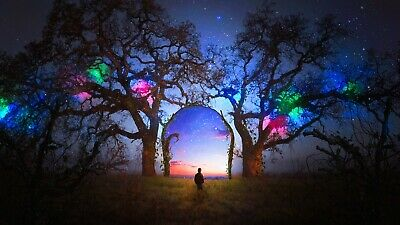 £19.99 • Buy Neon Fantasy Abstract Trees Portal Doorway Wall Art Large Framed Canvas Picture