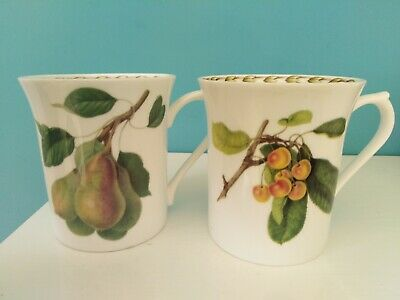 £14 • Buy 2 Queens Royal Horticultural Society 'Hooker's Fruit' Fine Bone China Mugs
