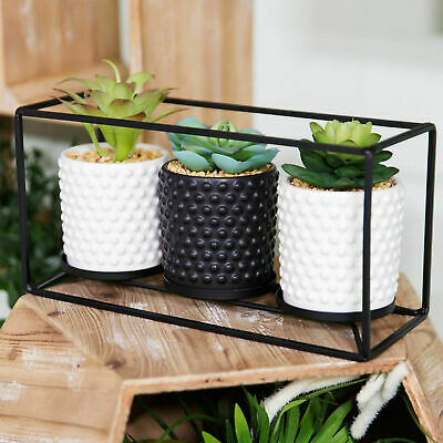 £24.99 • Buy Moroccan Black Metal Triple Pot Plant Holder With Artificial Succulents In Frame