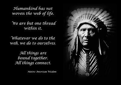 £5.99 • Buy Native American Indian Wisdom Quote Motivational Poster / Print / Picture