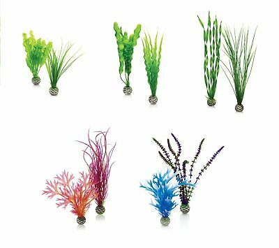 Oase Biorb Easy Plant 2 Pack Fish Tank Aquarium Decoration Biube Life Halo • 10.95£