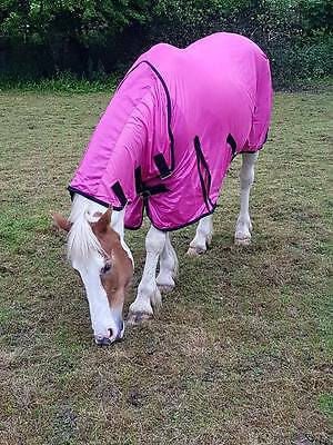 £22.99 • Buy New Design Horse Fly Rug Combo Attached Neck Cover Choice Of Colors On Sale