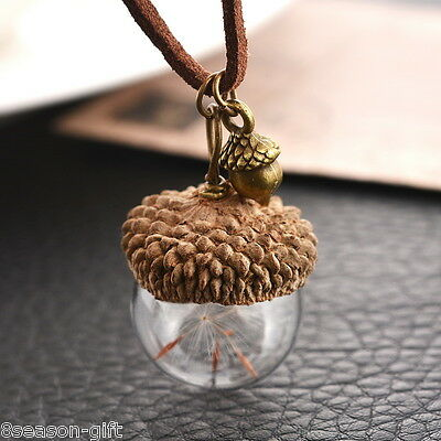 HX 1PC Acorn Shell Dandelion Glass Pendant Necklace For Women Jewelry 42cm • 1.63$