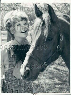 $20 • Buy 1972 Wire Photo Pretty Actress Sue Ane Langdon With Horse